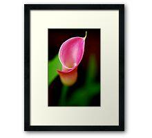 Gentle Embrace Framed Print