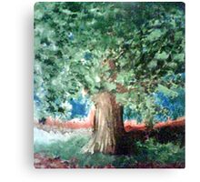 Ever clear Tree Canvas Print