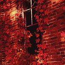 One Room School Window by Steven Godfrey