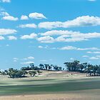 Western Australian Farmland by metriognome