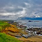 Pebble Beach by photosbyflood