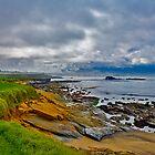 Pebble Beach by photosbyflood