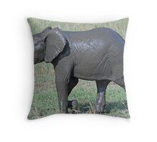 After the Mud Bath - Tarangire National Park, Tanzania Throw Pillow