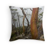 Labyrinth Snowgums Throw Pillow