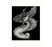 yin yan Art Print