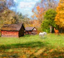 Horse Farm in Tennessee by MaryTimman