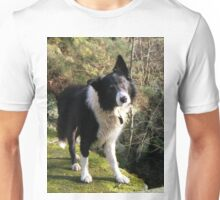 Indy at Nant-Y-Coed Unisex T-Shirt