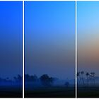 Three by Ritu Lahiri