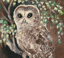 The Serious Owl by AngelArtiste