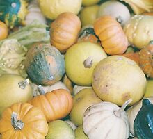 Pumpkins by Tim Laskovich