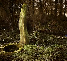 Holy Well, St-Siméon by WebVivant