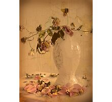 Vintage arrangement Photographic Print
