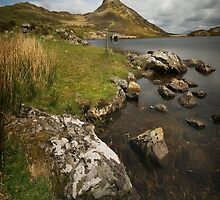 Llyn Cregennen - Along the Shore by eddiej