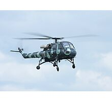 Westland Wasp Photographic Print