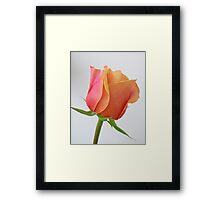 One and Only Framed Print