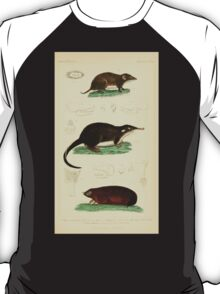 The Animal Kingdom by Georges Cuvier, PA Latreille, and Henry McMurtrie 1834 582 - Mammalia Mammals T-Shirt