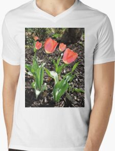 5 Tulips Mens V-Neck T-Shirt