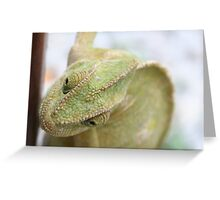 Chameleon Head Close Up Greeting Card
