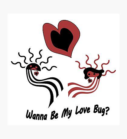 Wanna Be My Love Bug? Photographic Print
