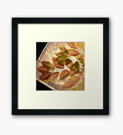 Leaves in the Ice #3 Framed Print