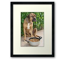 Lucky Doesn't Share Food Framed Print
