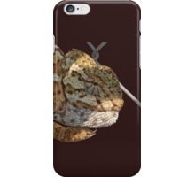 Chameleon Hanging On A Wire Fence Vector iPhone Case/Skin