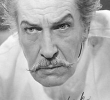 Vincent Price by lena9492