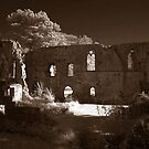 Jervaulx Abbey by cameron-shaw