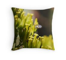 Finding the target Throw Pillow