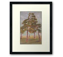 Cedar Quartet Framed Print