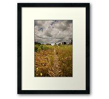 The Golden Road Framed Print
