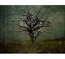 Apocalypto. Photographic Print