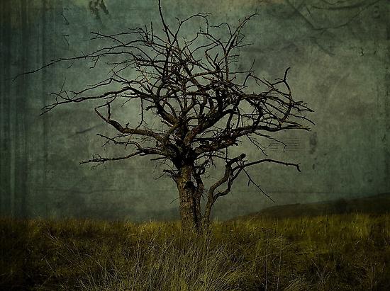 Apocalypto. by Katt25