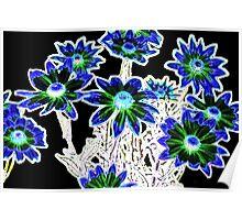 Flower pattern on black Poster