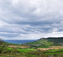 Coastal Overview - Eype Down by Susie Peek