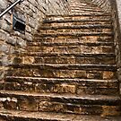 Lyme Regis Steps by Rob Lodge
