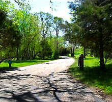 Long and Winding Road by jpryce