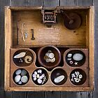 treasures by Sue Hammond