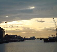 early morning on the Liffey  1 by Siobhain