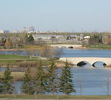 Winnipeg from Kilcona Park by Stephen Thomas
