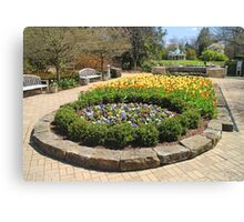 Tulip Time In Mill Creek Park Canvas Print