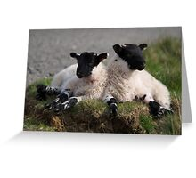 The Resting Of The Lambs Greeting Card
