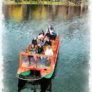 Swan Boats Boston Public Gardens by Edward Fielding