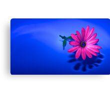 Flower On Blue #2 Canvas Print
