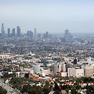 Los Angeles by MDossat