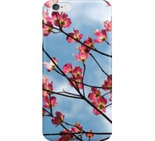 Pink Dogwood Reaching For The Clouds  iPhone Case/Skin