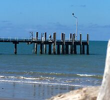 Clump Jetty.. by Peter Martin