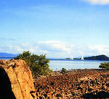 Hayman island by Peter Martin