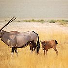 Oryx and Baby by Kimberley Mazzoni