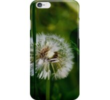 To Wish Upon iPhone Case/Skin